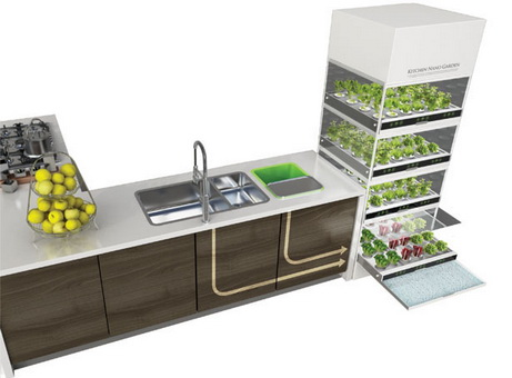 Kitchen Nano Garden